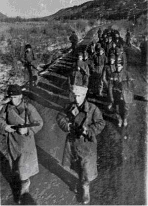 Пленные немцы, захваченные советскими войсками у сел. Кобань